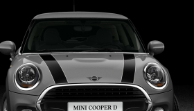 Bonnet stripes in black
